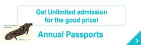 大変お得な年間パスポート
