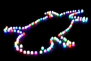 ワークショップで光の巨大オオサンショウウオが浮かび上がる!<br />