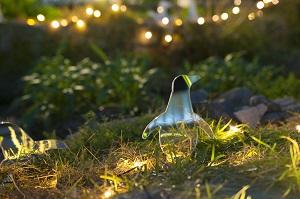 夜はペンギンたちがイルミネーションに変身