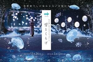 実際のクラゲと映像が調和した水族館ならではの<br>情感あふれる京都の冬の風景