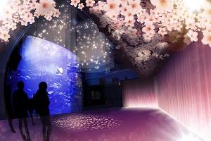「大水槽」の大空間が鮮やかなピンク色に変身
