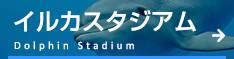 イルカスタジアム Dolphin Studium