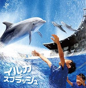 新感覚のウォーターアトラクション「イルカとスプラッシュ!!」