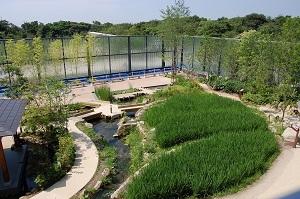 自然あふれる京都水族館の「京の里山」エリア