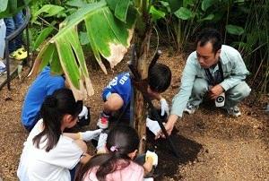 2015年5月に開催した第1回連携ワークショップ「ゾウさん、オットセイさんのウンチでバナナを育てる」のようす