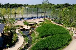 「京の里山大茶会」を開催する自然豊かな「京の里山」
