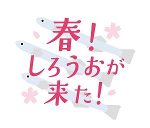 特別企画イベント「春!しろうおが来た!」