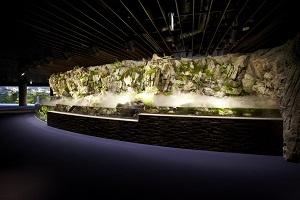 京都の河川にすむいきものを展示した「京の川」エリア