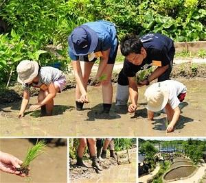 【5月開催】「田んぼで遊ぼう!~田植え編~」泥の感触を感じながら田植えにに挑戦!