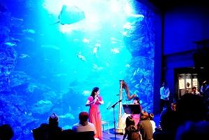 「京の海」大水槽を背景にしたコンサート(イメージ)