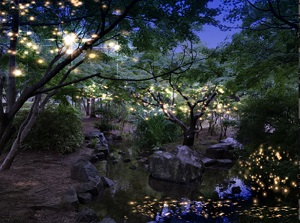 『京都・梅小路七夕あそび2017~夜の公園で憩う~』を開催(※イベントは終了しました)