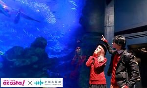 夜の京都水族館が貸切!「acosta!@京都・梅小路」開催!2/11(※イベントは終了しました)