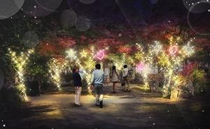 「京都・梅小路みんながつながるプロジェクト」<br />ライトアップイベント『京都・冬の光宴2018』開催